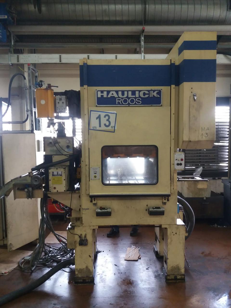 gebrauchte Pressen und Bördelmaschinen Stanzautomat-Doppelständer HAULICK & ROOS RVD 80 - 800 NS